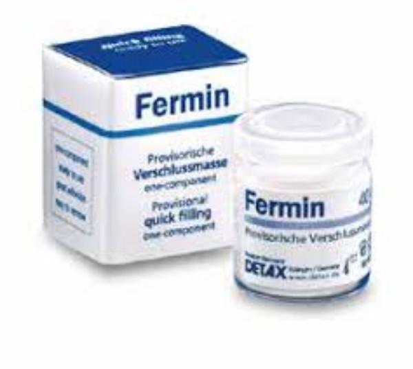 Cemento Temporal Fermin 40 Grs.